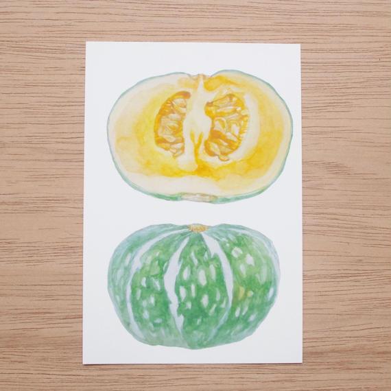 白井裕子 ポストカード かぼちゃ