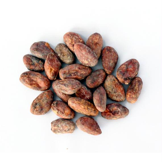 カカオ豆 - Cuba産