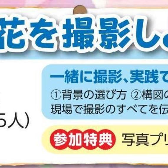6/23(土)栃木県黒羽城址公園にてアジサイを撮影しよう!!