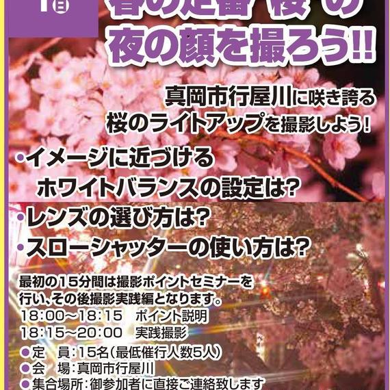 """4/1(日) ライトアップされた""""桜""""を撮ろう!!"""