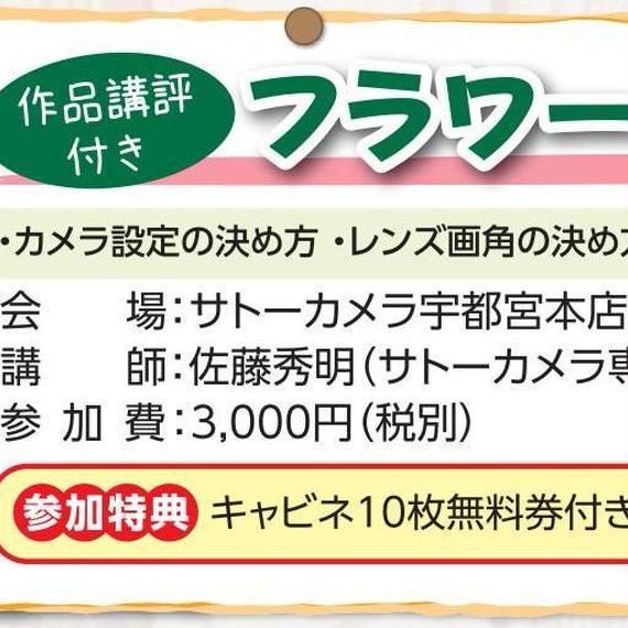 10/23(火)フラワーフォト(中級編)
