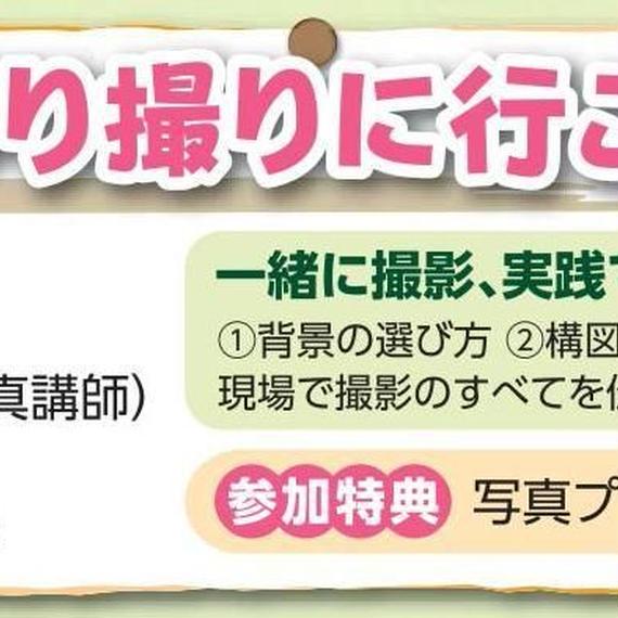 5/5(土)開催蔵の街&鯉のぼりを撮りに行こう!!