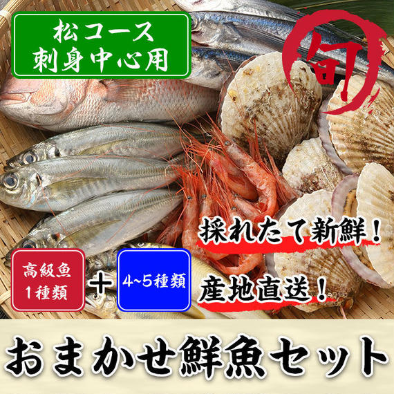 鮮魚セット 松コース(刺身中心用)