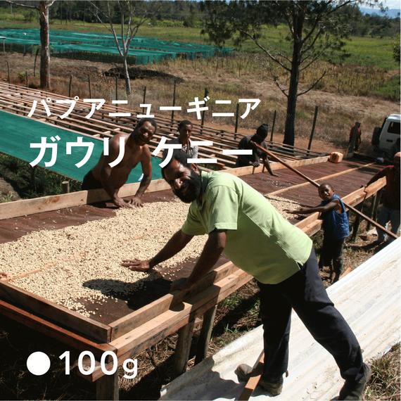 パプアニューギニア ガウリ・ケニー / 浅煎り (High Roast)