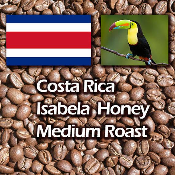自家焙煎自家焙煎コーヒー豆 コスタリカ イサベラ ハニー ミディアムロースト