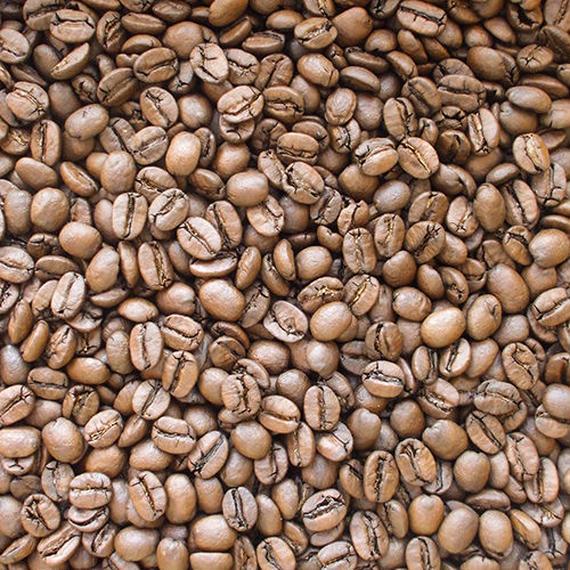 自家焙煎コーヒー豆 セラード・樹上完熟 ミディアムロースト