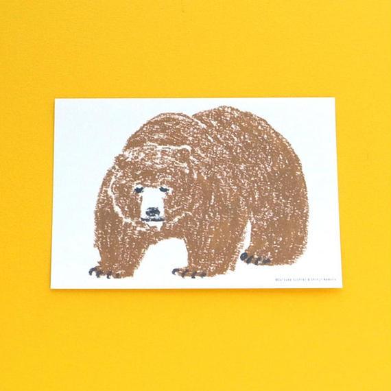 ポストカード動物2/クマ