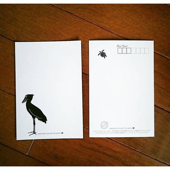 ハシビロコウ ポストカード Shoebill Postcard