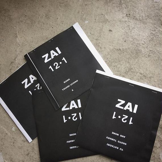 ZAI 12.1