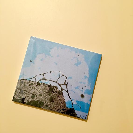 BRRWD LOVE Vol.1  -V.A. 【CD】