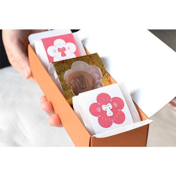 申年の南高梅(3個入り)(普通贈答用パッケージ)複数箱購入