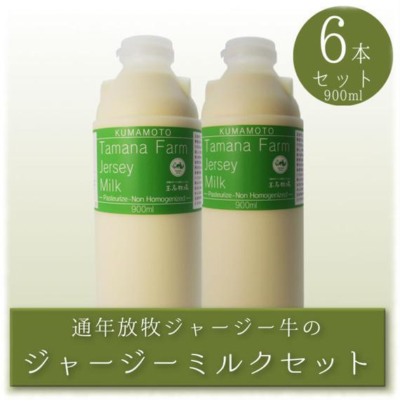 ジャージーミルク 900ml 6本セット