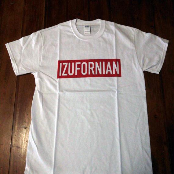 IZUFORNIAN T005