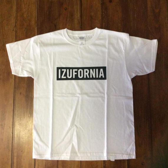 IZUFORNIA T002