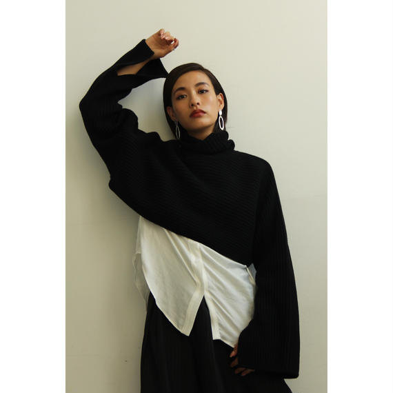 Cashmere Mix Cropped Sweater (Black/Camel)(tp273)