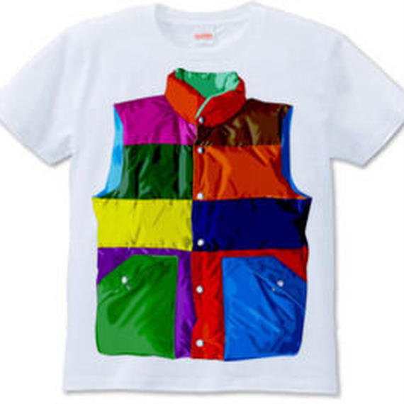 Color downvest (6.2 oz)