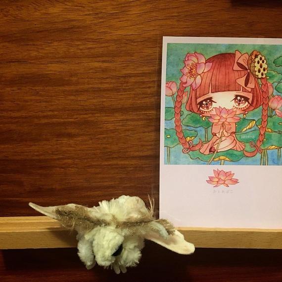 ポストカード 乙姫箱ひろよ 蓮の妖精 2018for花蓮 HANDandHEART
