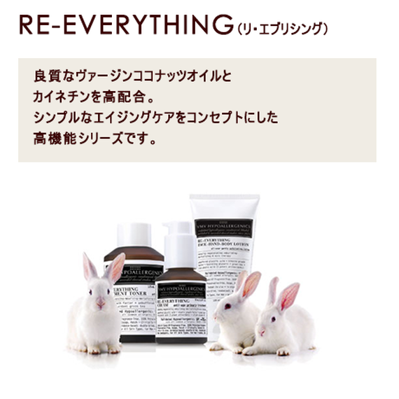 RE-EVERYTHING(リ・エブリシング)