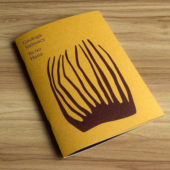 Artist Book'Ilana Halperin: Geologic Intimacy'