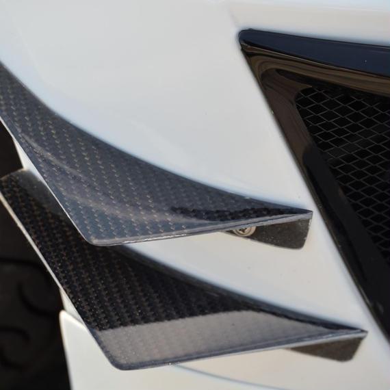 S660 カーボンカナード