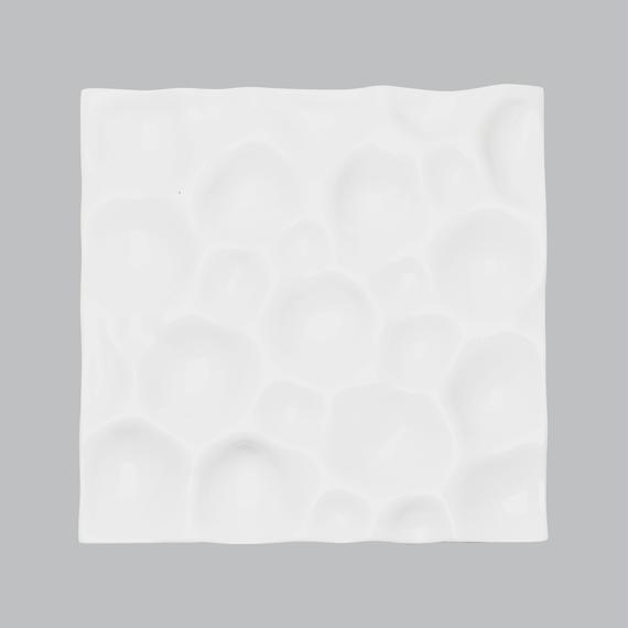 snow plate 角皿