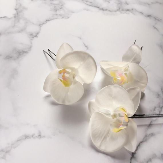 胡蝶蘭 ヘアピン  white