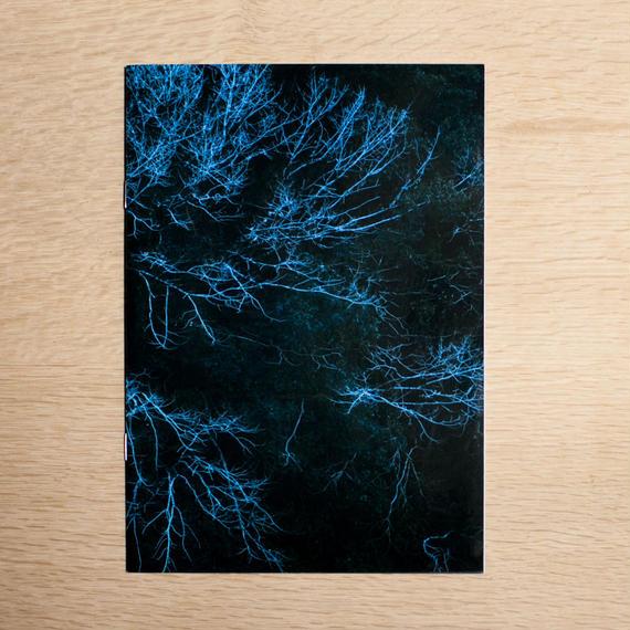 樹海001 福間 海セット(フォトブック+スペシャルエディション付)