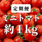 【定期便】八ヶ岳産 田宮トマト 約1kg   味濃いめ!農薬は薄め!おやつやお弁当、ダイエットの定番!