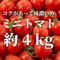 八ヶ岳産ミニトマト約4kg
