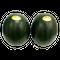 黒小玉西瓜 2玉入
