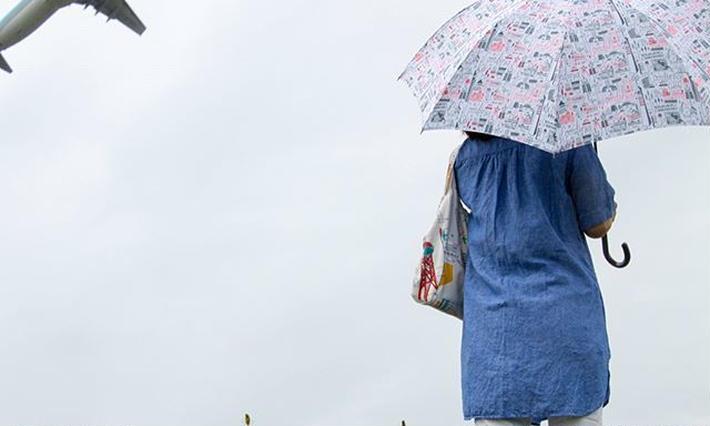 hometown umbrella