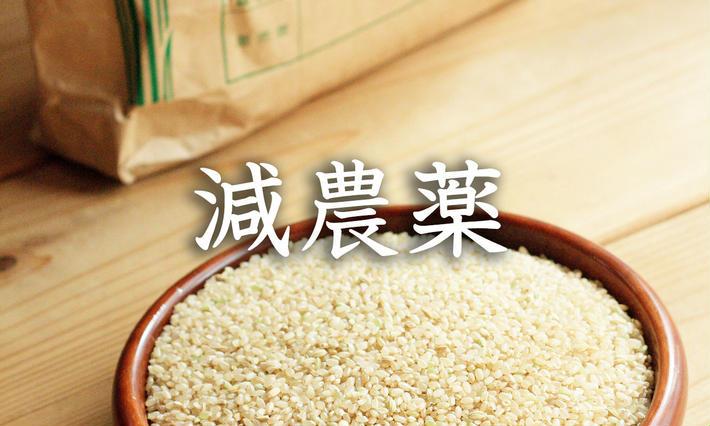 お米の定期便(飛騨産コシヒカリ)