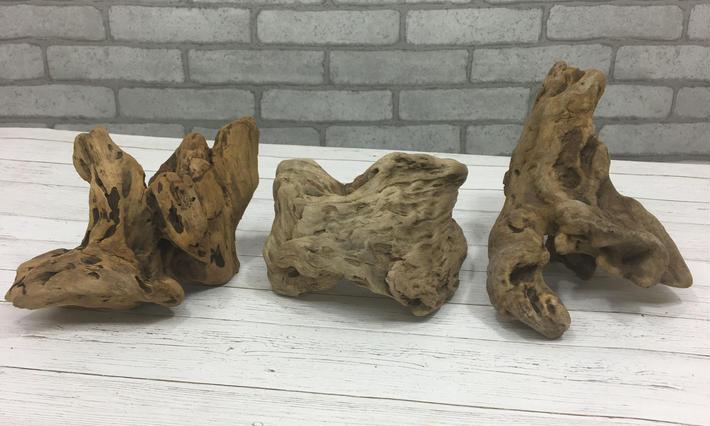流木のかけら(中)