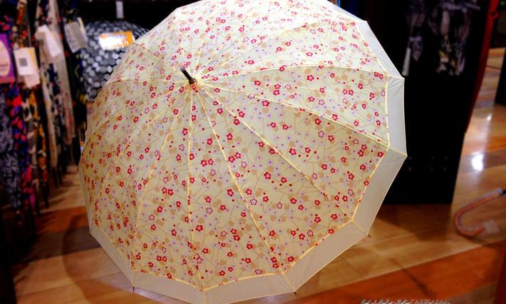 【旅傘】ワンタッチ