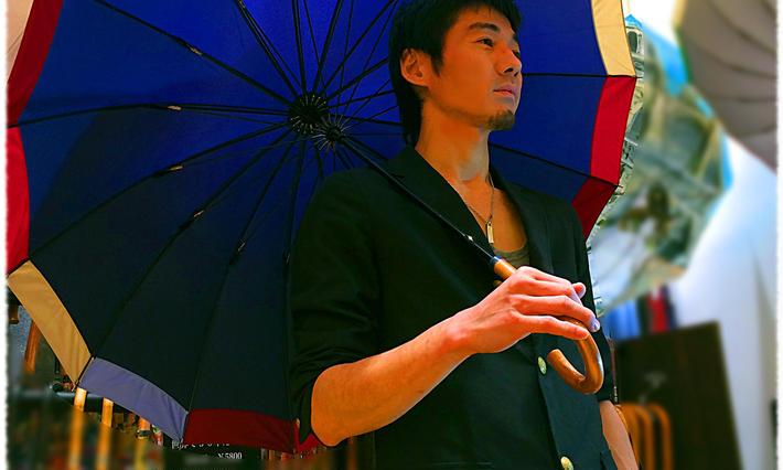 【旅傘】レデイース傘