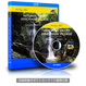 4Kカメラ映像【Healing Blue ヒーリングブルー】秋川渓谷・檜原村 - 夏- 〈動画約60分〉ポストカード10種付属