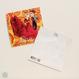 Olé ポストカード(封筒なし)(全2種・本体価格:¥200)