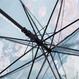 梅家紋と蝶家紋 傘
