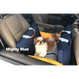 Mon carseat Mighty Blue