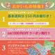cotori -sunny pastel mix (CO312735 E)軽やかローン生地