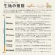 Bear's Resort -marigold (CO152142 D)レシピ付
