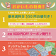 Neko Cafe -yellow/green (CO112538 A)