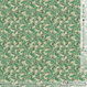 Frage -moss green (CO822157 D)