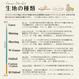 【残り190cm!】SHEEEEEP -mustard (CO112495 B)/シーチング