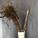 根引き松のお飾り