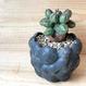 Cubic Cloudy Pot(black penetration ver.)