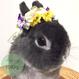 うさぎさんの花冠「Pansy」Mサイズ
