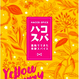 酒粕でできた発酵スパイス「ハコスパ」Yellow Curry