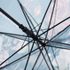 Japanese traditional family emblem art Umbrella