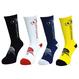 Gyoku-sai Socks 2.0